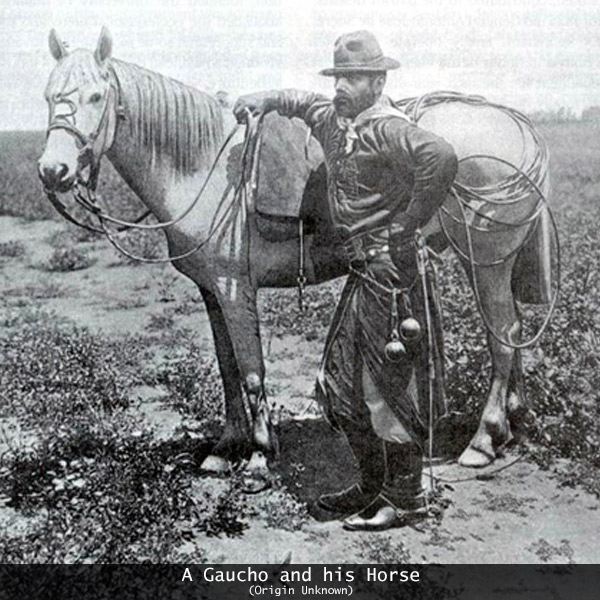 History of Argentine Tango: Gaucho and his Horse